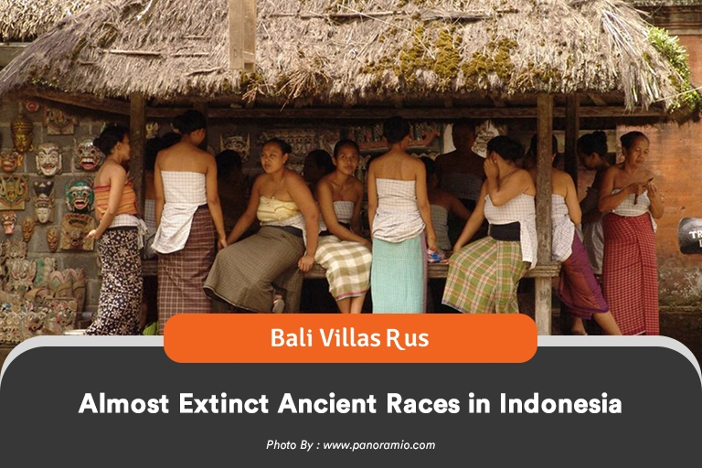 Ancient races in Indonesia - An article by Bali Villas R Us, the best services for Bali Villas Management and Bali Villas Rental